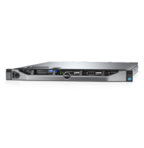 (TM) PowerEdge(TM) R230 Rack Mount Server