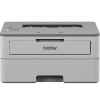 Brother Printer HL-B2080DW